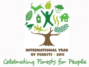 International Year of Forests 2011 logo