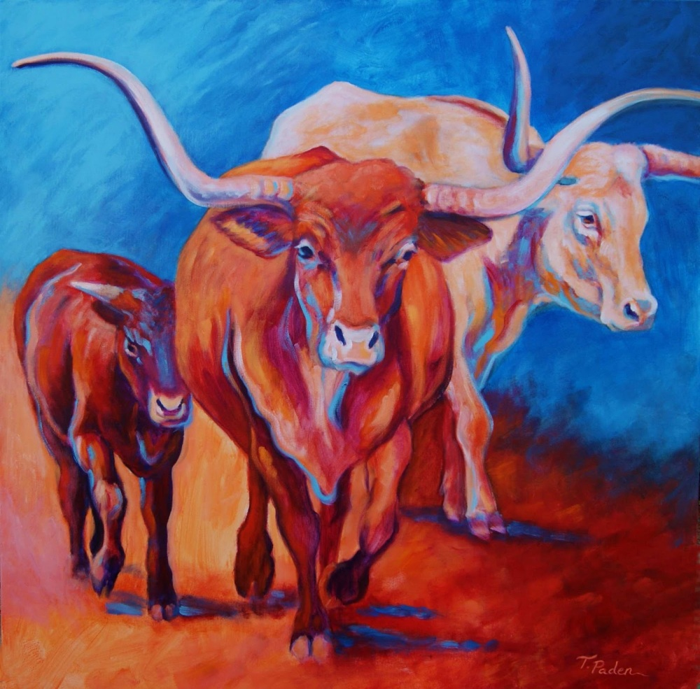 Longhorn Cows in the Southwestern Sun, T.Paden
